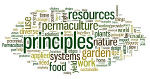 permaculture-principles-wordle