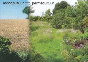 permacultuur versus monocultuur